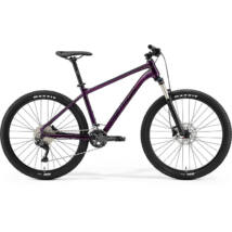 Merida Big.Seven 300 2021 férfi Mountain Bike