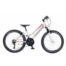 Neuzer Mistral 20 Lány Gyerek Kerékpár