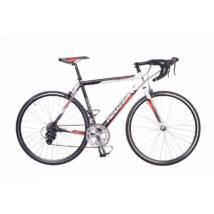 Neuzer Whirlwind Basic Plus férfi országúti kerékpár