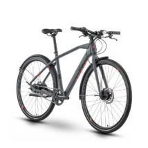 Raymon UrbanRay 2.0 2021 férfi City Kerékpár