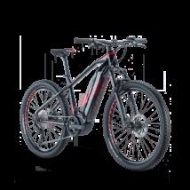 Raymon HardRay E-Nine 6.0 2021 férfi E-bike