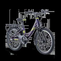Raymon TwoRay 2.5 Street wave 2021 Gyerek Kerékpár