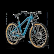 Raymon HardRay Seven 4.0 2021 férfi Mountain bike