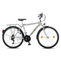 Schwinncsepel BOSS ATB 24 FFI 18SP 14 EZÜST férfi City Kerékpár