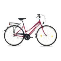 Schwinncsepel Landrider 28/17 N3 2017 Női Trekking Kerékpár