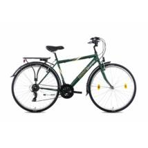 Schwinncsepel Landrider 28/19 21SP 21 férfi Trekking Kerékpár zöld