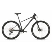 Superior XP 929 2020 férfi Mountain Bike