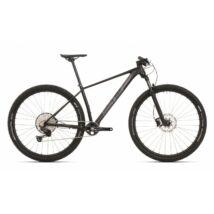 Superior XP 939 2020 férfi Mountain Bike matt fekete