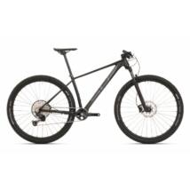 Superior XP 939 2020 férfi Mountain Bike