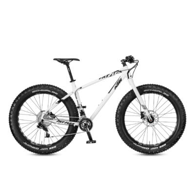 KTM FAT FLEA 20s GX 2017 Fatbike